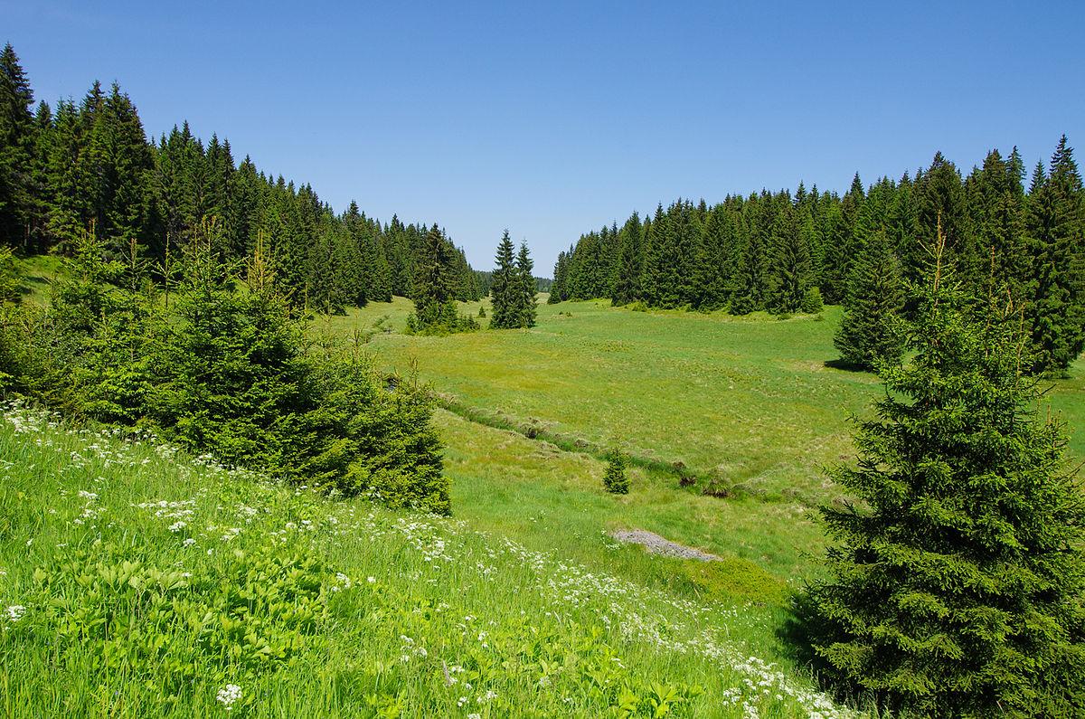 Přírodní park Přebuz
