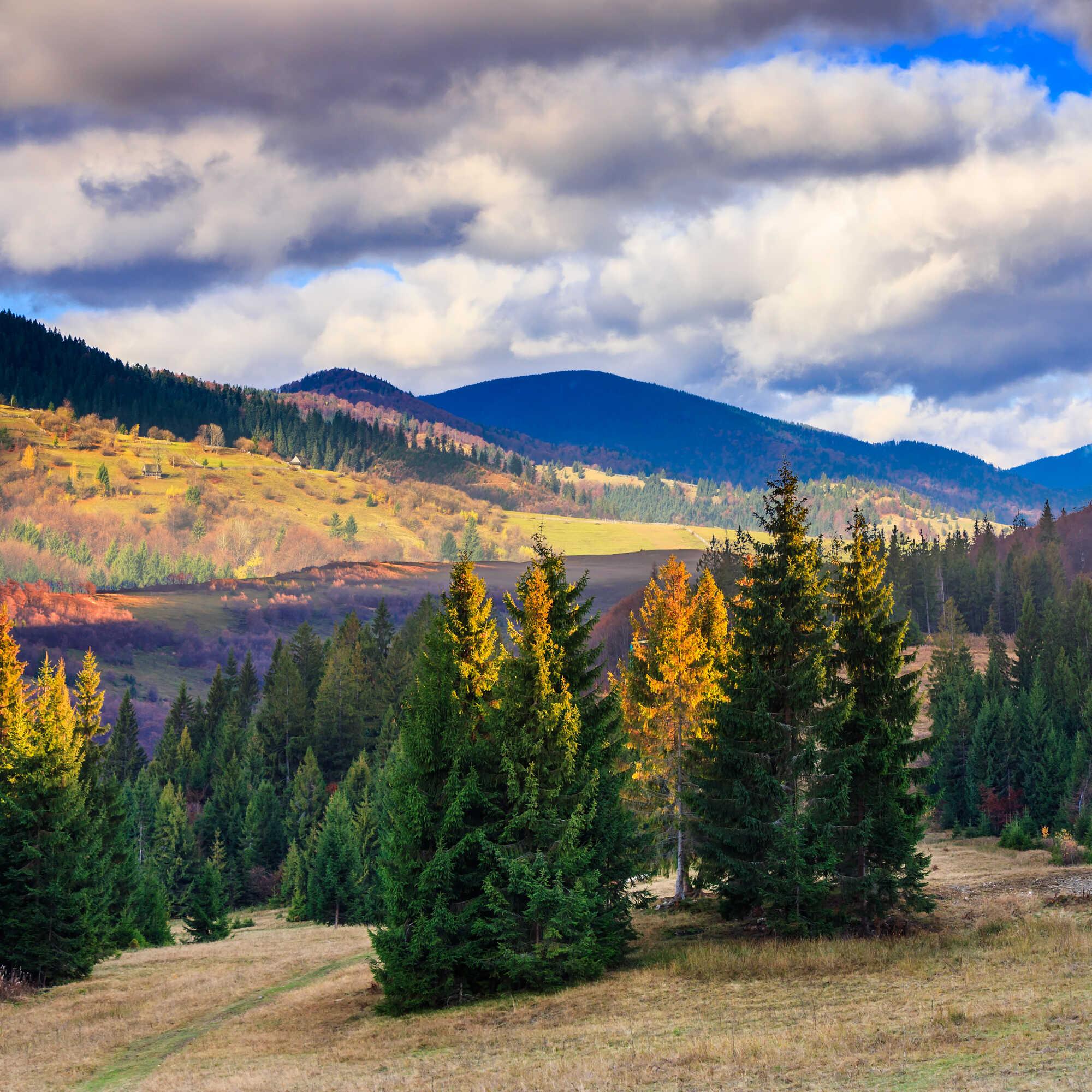 Krásna příroda v Jizerských horách