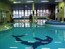 Indoor swimming pool Neratovice